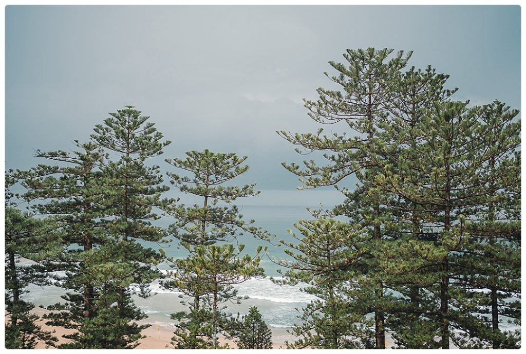 photo-wedding-manly-beach-australia