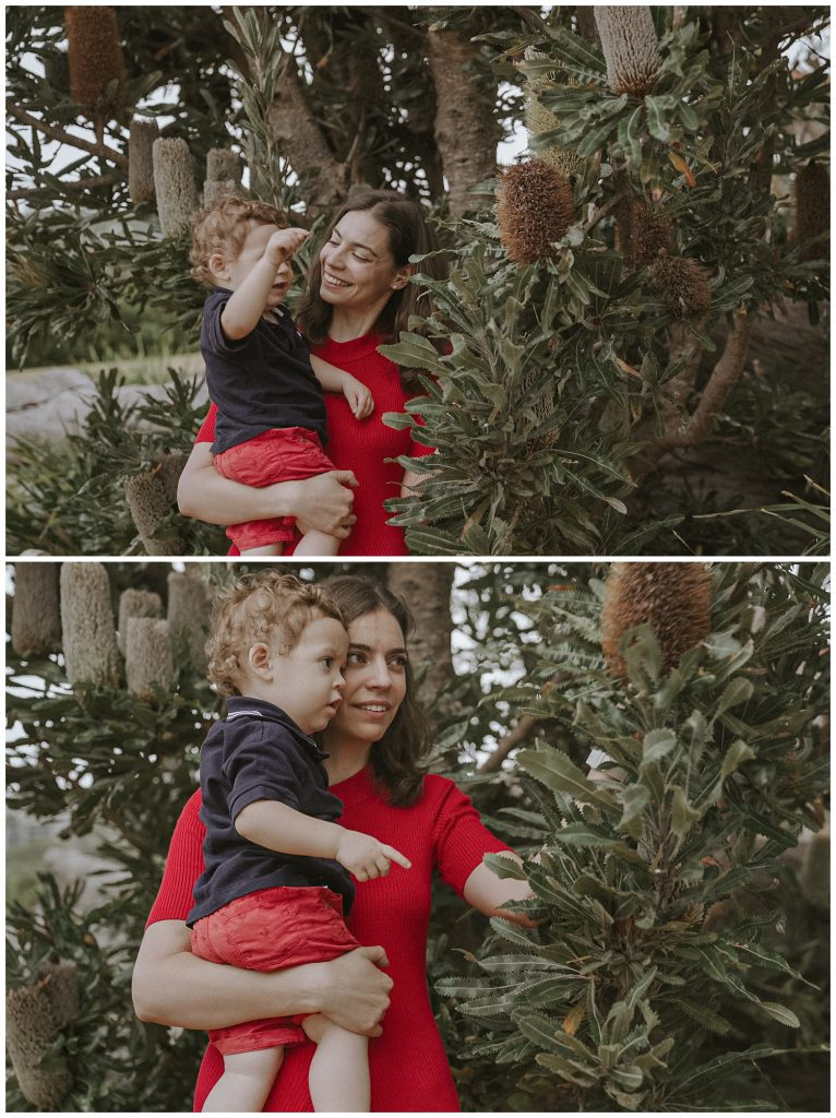 mother-showes-banksia-leaves-to-the-son-photo