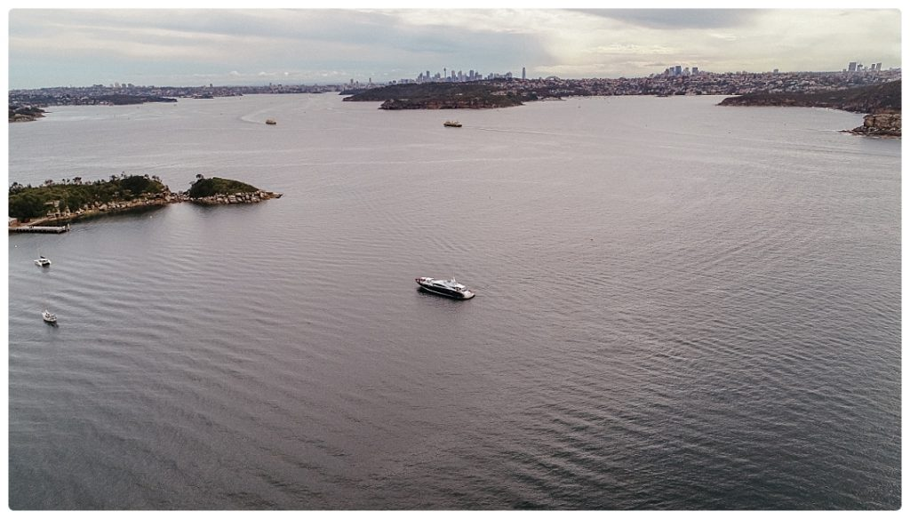 sydney harbour cruise wedding drone photo